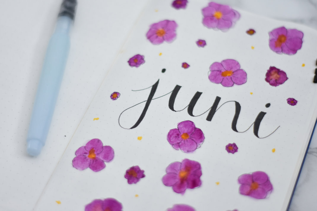 setup van mijn bullet journal in juni